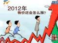 2012中国经济成长之坎? (2836播放)