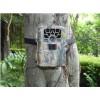 拍摄雪豹保护动物红外相机  SG-880V 夜鹰红外相机