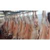 现货批发冷冻整羊 全羊 羊肚 羊蛋 羊宝 羊肉 羊前槽骨