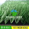 足球场人造草坪SLD-6 晟林草坪厂家直销户外运动场仿真草坪