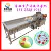 连续式洗菜机 涡流洗菜机 蔬菜清洗机加工生产线 中央厨房设备