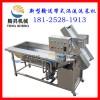 新型涡流高压翻浪洗菜机 涡流节水型蔬菜清洗机厂家直销质量保证
