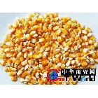 大量供应玉米批发供应玉米/厂家直销高质量可做各种饲料的次粉