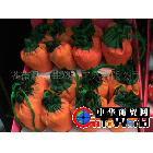 供应190T涤纶料创意胡萝卜型便携购物袋